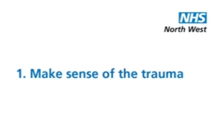 Thumbnail for Make sense of the trauma