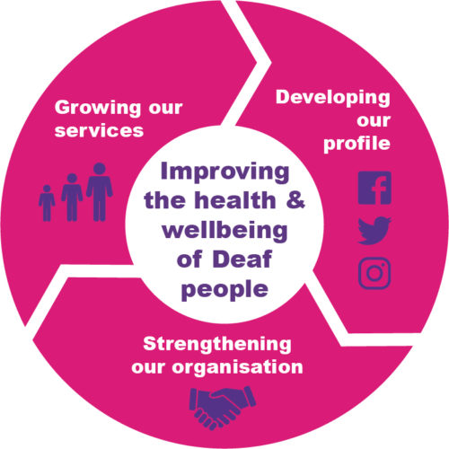 Infographic shows 3 areas of the plan: growing our services, developing our profile and strengthening our organisation.